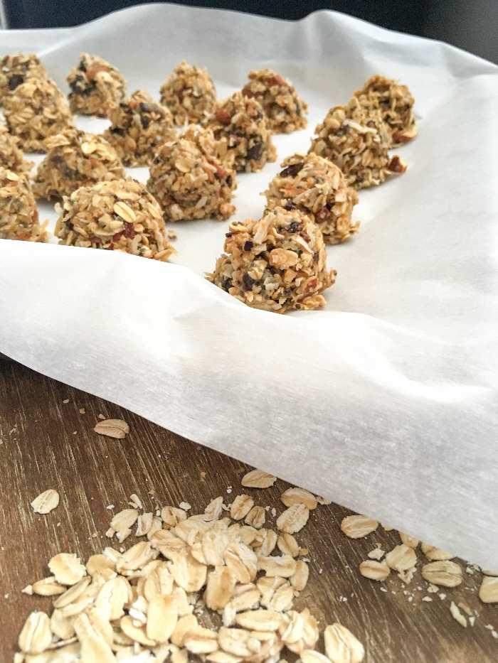 gluten-free almond joy protein bites