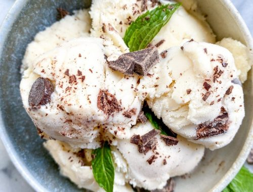 Protein Ice Cream Recipe Mint Chocolate Chip